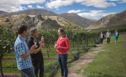 Group of people with wine glasses walking around the vineywards in Gibbston Queenstown New Zealand on a Queenstown Wine Trail wine tour