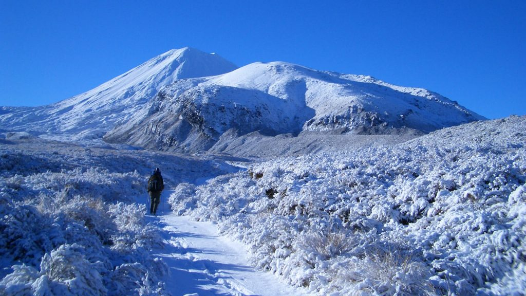 Snowy path and landscape on the